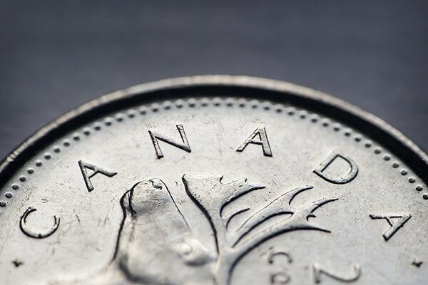 A close up image of a Canadian quarter
