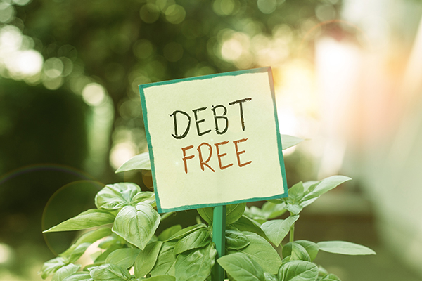Debt free sign in a plant pot