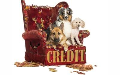 3 Ways People Destroy Their Credit Score