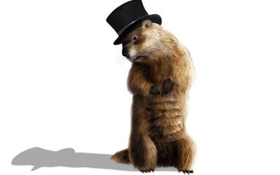 What Do Groundhogs Know About Money & Financial Management?