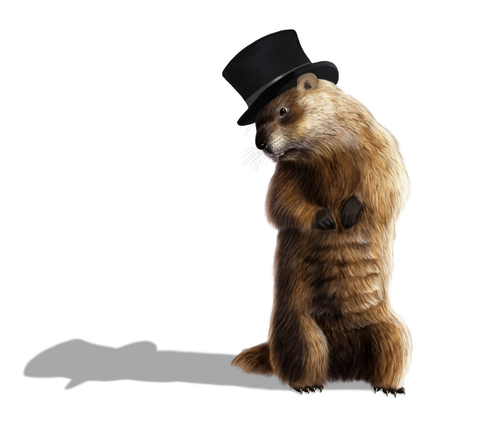 What Groundhog Day has to do with financial planning and management.