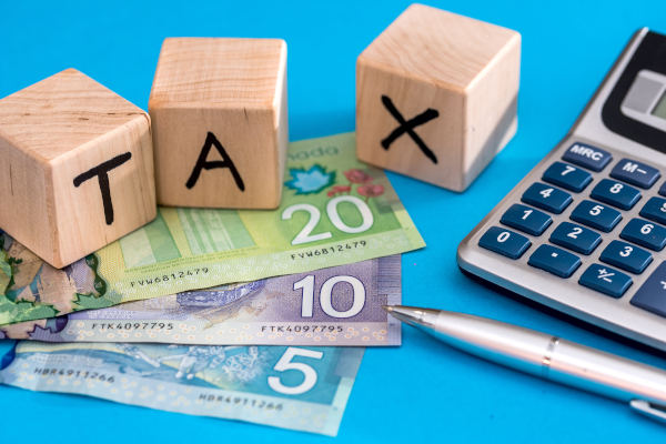 Filing Taxes in Canada: Should You DIY or Hire a Pro?